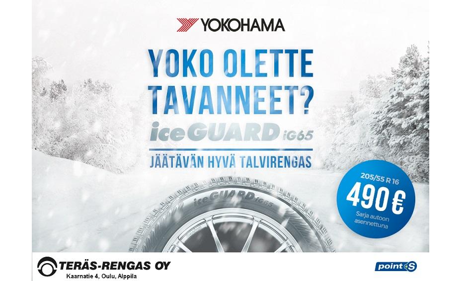 https://pointssuomi.fi/yokohama-iceguard-ig65/